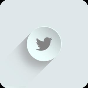 Das Bild zeigt das Twitter Logo auf einem weißen Hintergrund. Du kannst hier also Twitter Favorites kaufen.